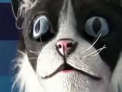CAT-mask-hp